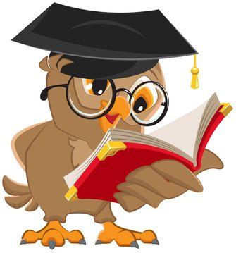 Owl reading a book
