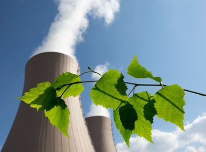Green branch against nuclear power plant